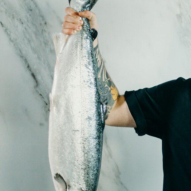 Wat je nodig hebt als je gaat vissen op grote vissen